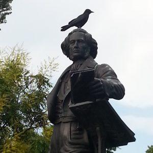 Felix ist ein Vogel zu Kopf gestiegen (Schnappschuss unseres Mitgliedes Wolfgang Schumacher)