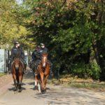Die Reiter der Polizei vor dem Mendelssohn Denkmal Düsseldorf